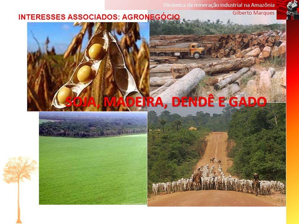 Dinâmica da mineração industrial na Amazônia Gilberto Marques SOJA, MADEIRA, DENDÊ E GADO INTERESSES ASSOCIADOS: AGRONEGÓCIO