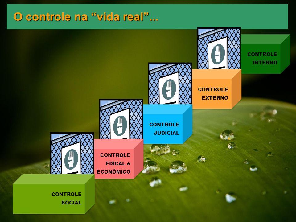 O controle na vida real... CONTROLE INTERNO CONTROLE EXTERNO CONTROLE JUDICIAL CONTROLE FISCAL e ECONÔMICO CONTROLE SOCIAL