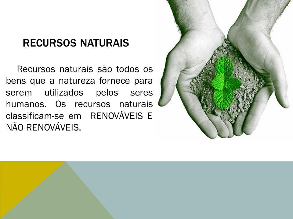 RECURSOS NATURAIS Recursos naturais são todos os bens que a natureza fornece para serem utilizados pelos seres humanos. Os recursos naturais classific