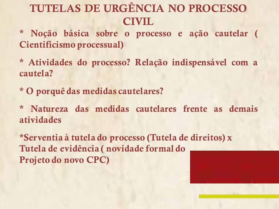 TUTELAS DE URGÊNCIA NO PROCESSO CIVIL * Noção básica sobre o processo e ação cautelar ( Cientificismo processual) * Atividades do processo? Relação in