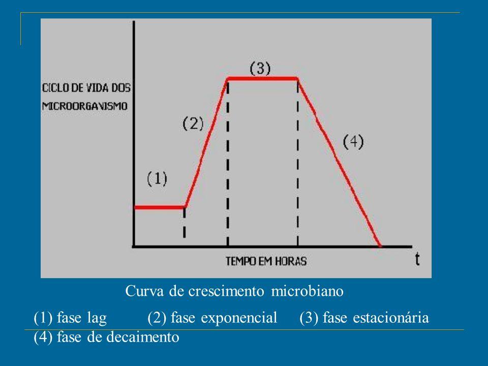 Curva de crescimento microbiano (1) fase lag (2) fase exponencial (3) fase estacionária (4) fase de decaimento