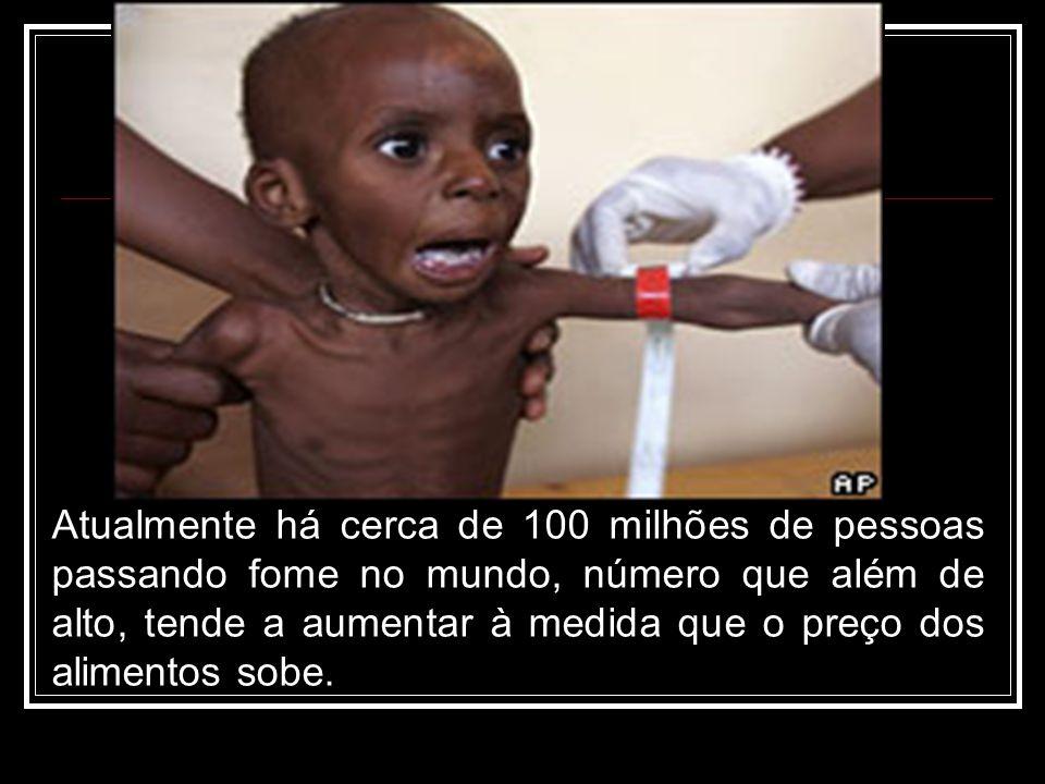 Atualmente há cerca de 100 milhões de pessoas passando fome no mundo, número que além de alto, tende a aumentar à medida que o preço dos alimentos sobe.