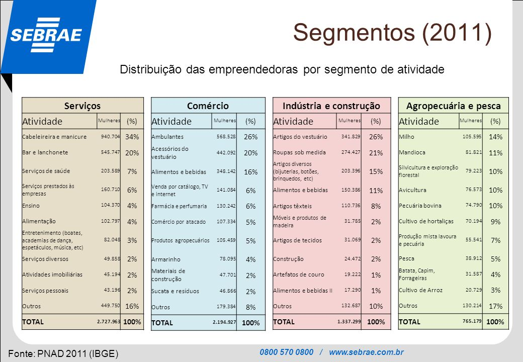 0800 570 0800 / www.sebrae.com.br SEBRAE Segmentos (2011) Fonte: PNAD 2011 (IBGE) Distribuição das empreendedoras por segmento de atividade Serviços A