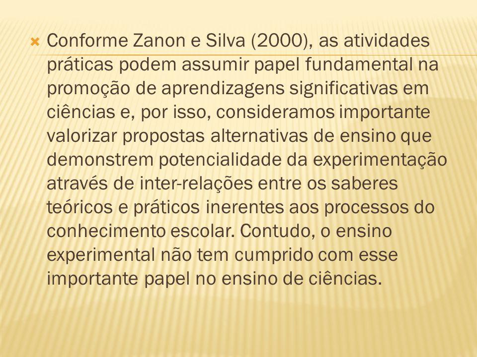 Conforme Zanon e Silva (2000), as atividades práticas podem assumir papel fundamental na promoção de aprendizagens significativas em ciências e, por i