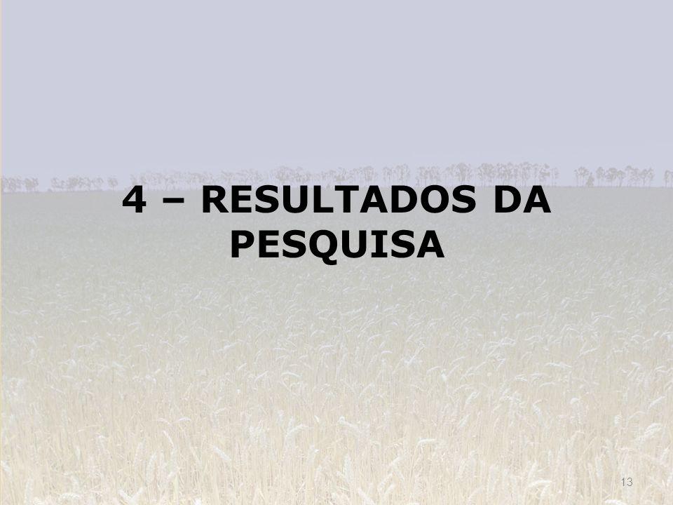 4 – RESULTADOS DA PESQUISA 13