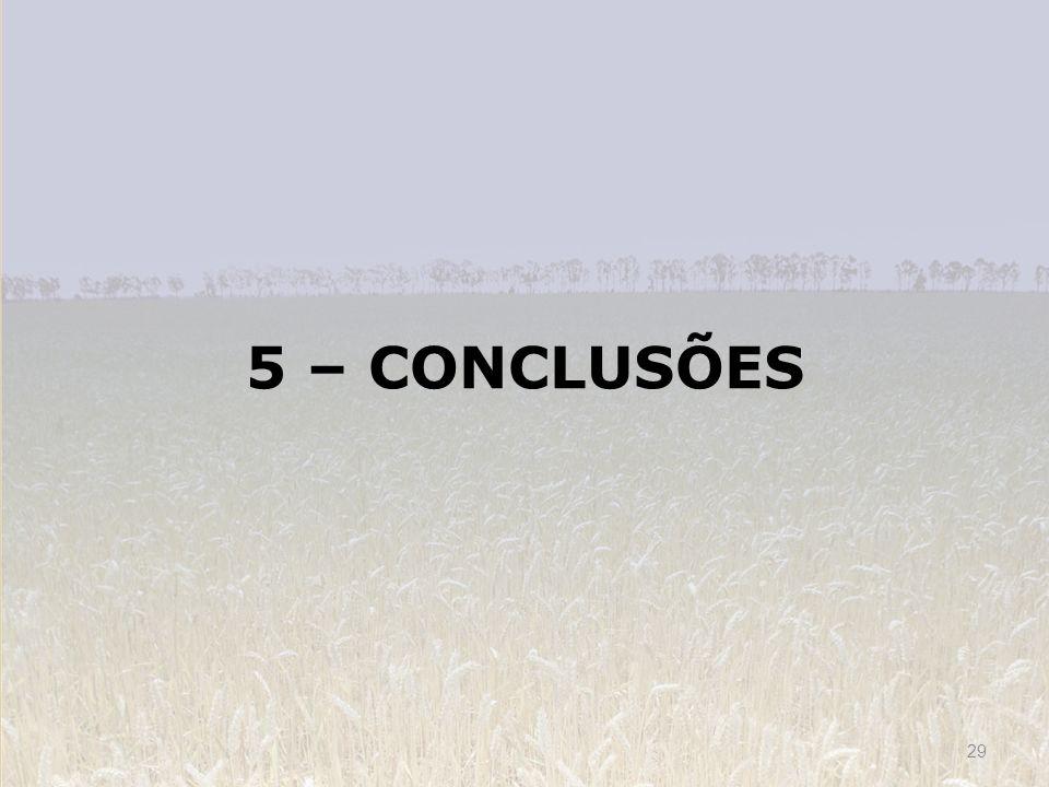 5 – CONCLUSÕES 29