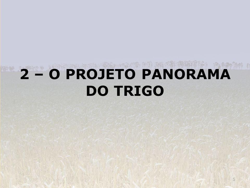 2 – O PROJETO PANORAMA DO TRIGO 5