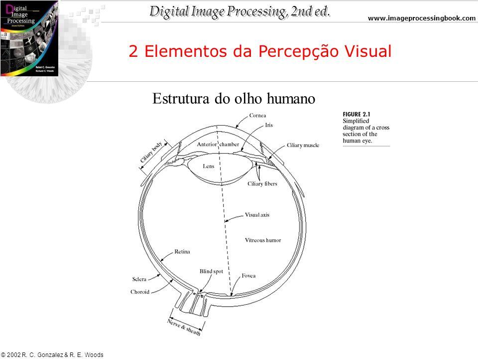 Digital Image Processing, 2nd ed. www.imageprocessingbook.com © 2002 R. C. Gonzalez & R. E. Woods 2 Elementos da Percepção Visual Estrutura do olho hu