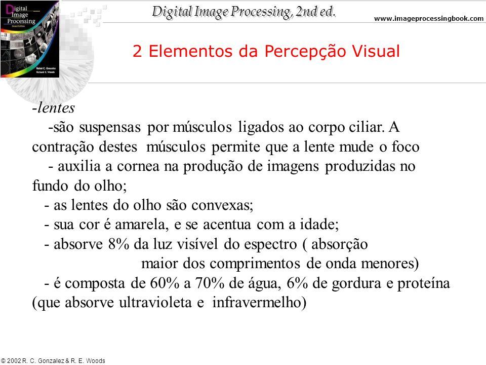 Digital Image Processing, 2nd ed. www.imageprocessingbook.com © 2002 R. C. Gonzalez & R. E. Woods -lentes -são suspensas por músculos ligados ao corpo