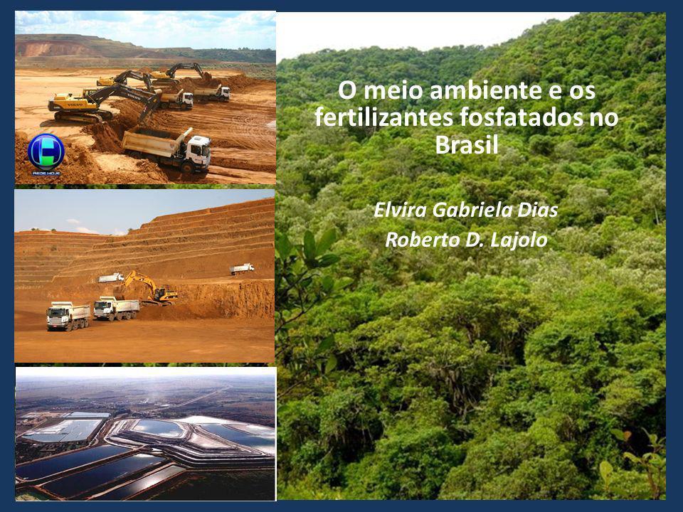 Elvira Gabriela Dias Roberto D. Lajolo O meio ambiente e os fertilizantes fosfatados no Brasil