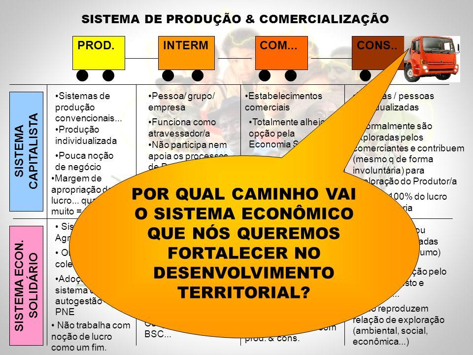 SISTEMA DE PRODUÇÃO & COMERCIALIZAÇÃO PROD.INTERMCOM...CONS..