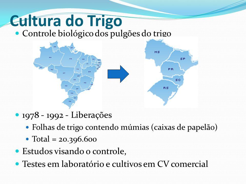 Controle biológico dos pulgões do trigo 1978 - 1992 - Liberações Folhas de trigo contendo múmias (caixas de papelão) Total = 20.396.600 Estudos visand
