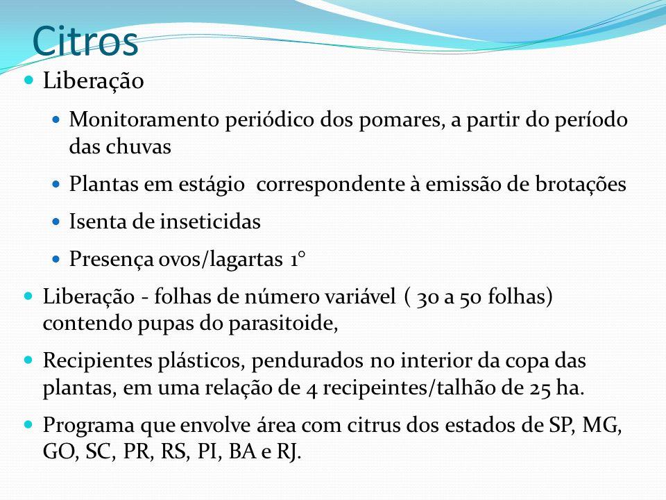 Liberação Monitoramento periódico dos pomares, a partir do período das chuvas Plantas em estágio correspondente à emissão de brotações Isenta de inset