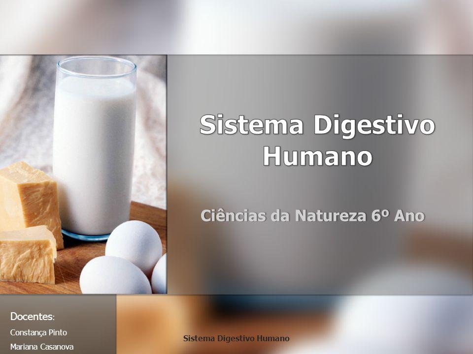 Ciências da Natureza 6º AnoCiências da Natureza 6º Ano Docentes : Constança Pinto Mariana Casanova Sistema Digestivo Humano