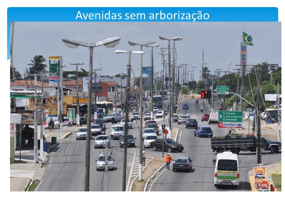 Avenidas sem arborização