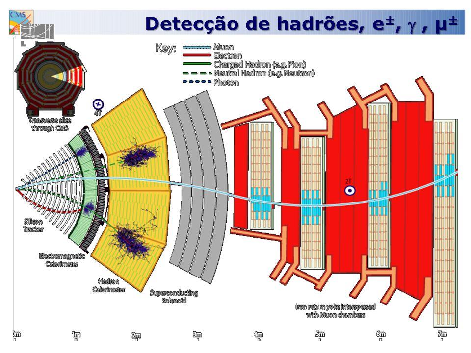 Detecção de hadrões, e ±,, µ ±