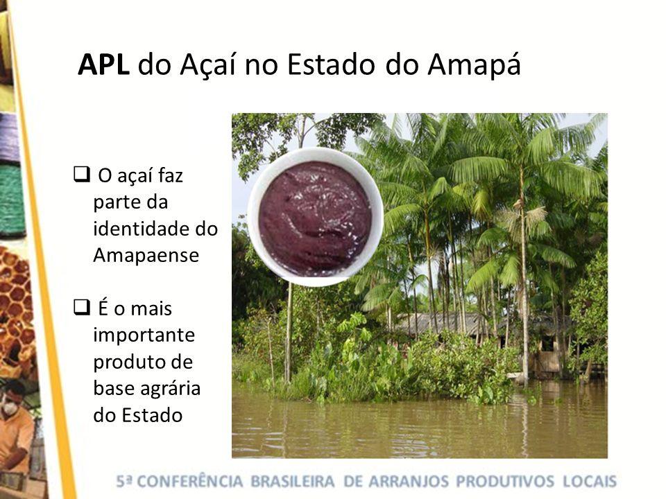 APL do Açaí no Estado do Amapá O açaí faz parte da identidade do Amapaense É o mais importante produto de base agrária do Estado