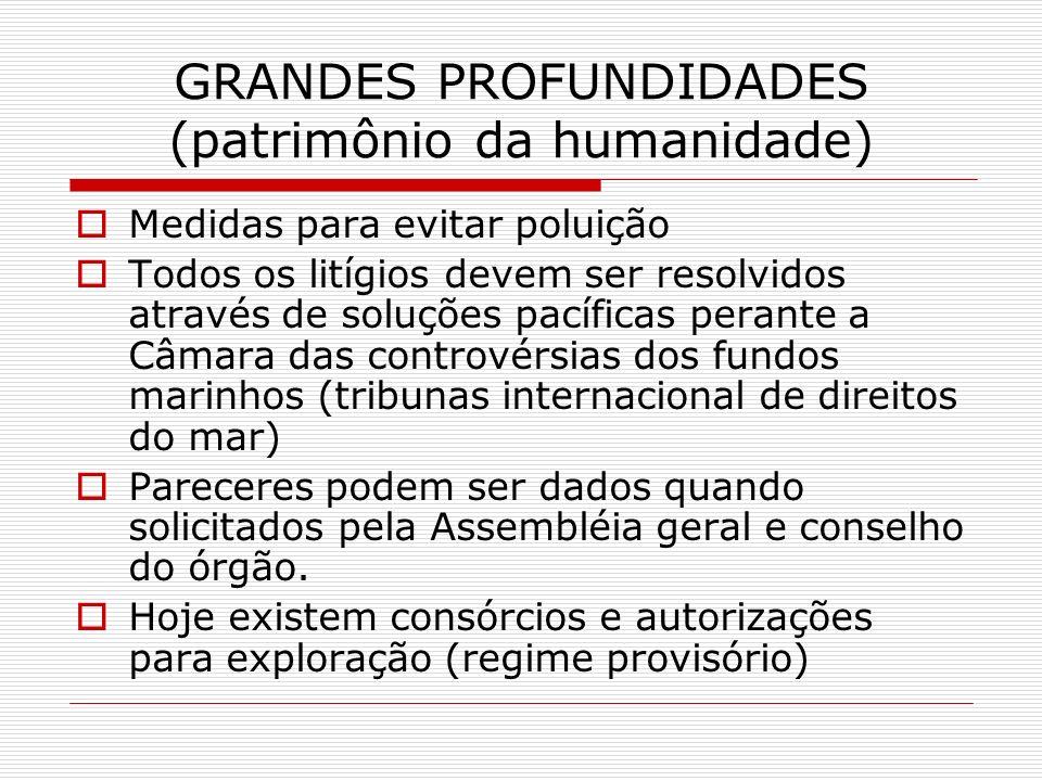GRANDES PROFUNDIDADES (patrimônio da humanidade) Medidas para evitar poluição Todos os litígios devem ser resolvidos através de soluções pacíficas per