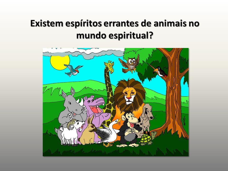 Existem espíritos errantes de animais no mundo espiritual?