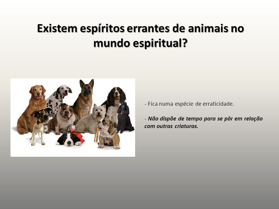 Existem espíritos errantes de animais no mundo espiritual? - Fica numa espécie de erraticidade. - Não dispõe de tempo para se pôr em relação com outra