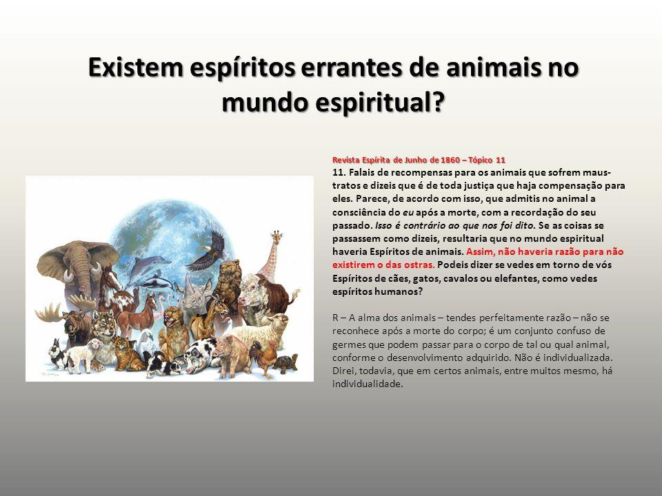 Existem espíritos errantes de animais no mundo espiritual? Revista Espírita de Junho de 1860 – Tópico 11 Revista Espírita de Junho de 1860 – Tópico 11