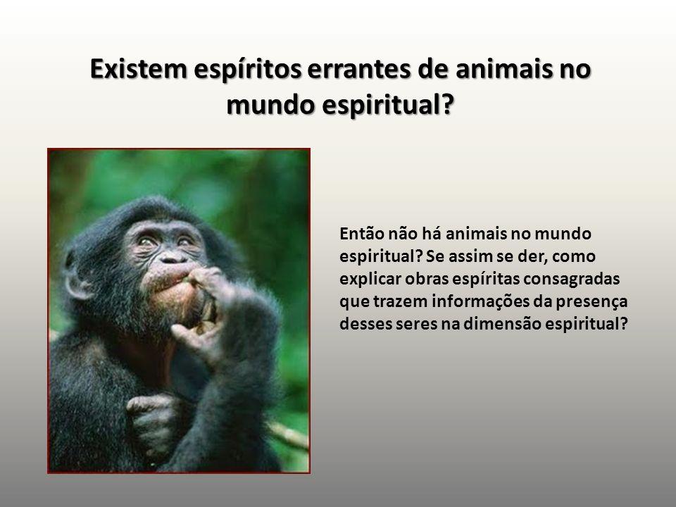 Existem espíritos errantes de animais no mundo espiritual? Então não há animais no mundo espiritual? Se assim se der, como explicar obras espíritas co