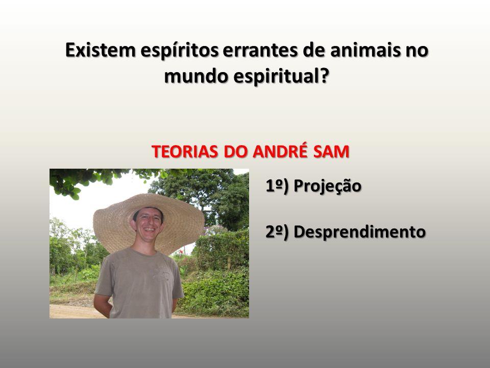 Existem espíritos errantes de animais no mundo espiritual? TEORIAS DO ANDRÉ SAM 1º) Projeção 2º) Desprendimento