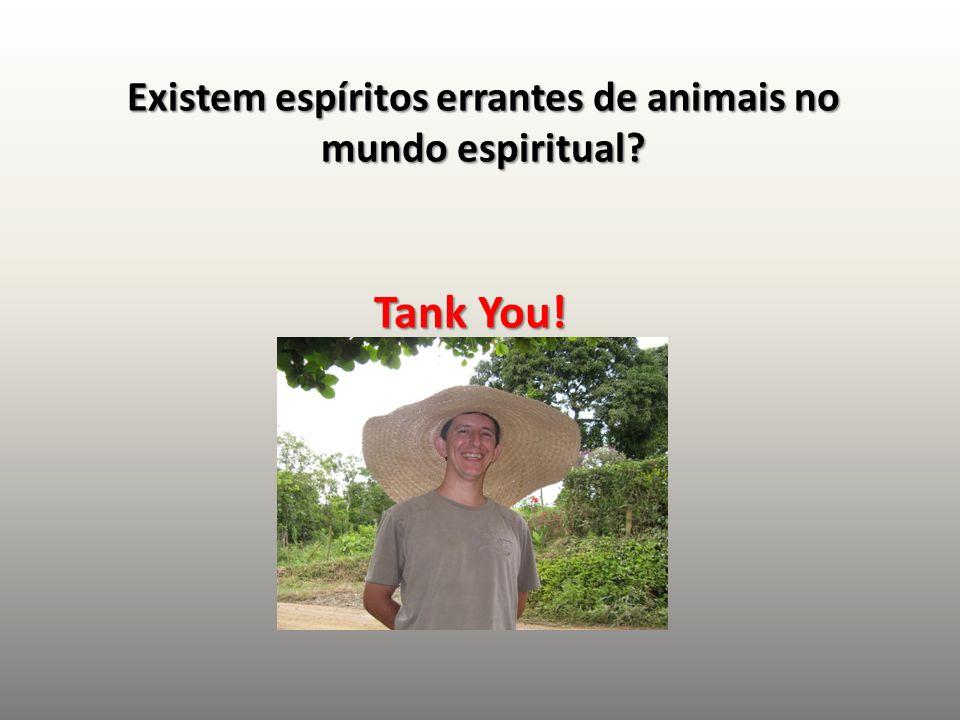 Existem espíritos errantes de animais no mundo espiritual? Tank You!