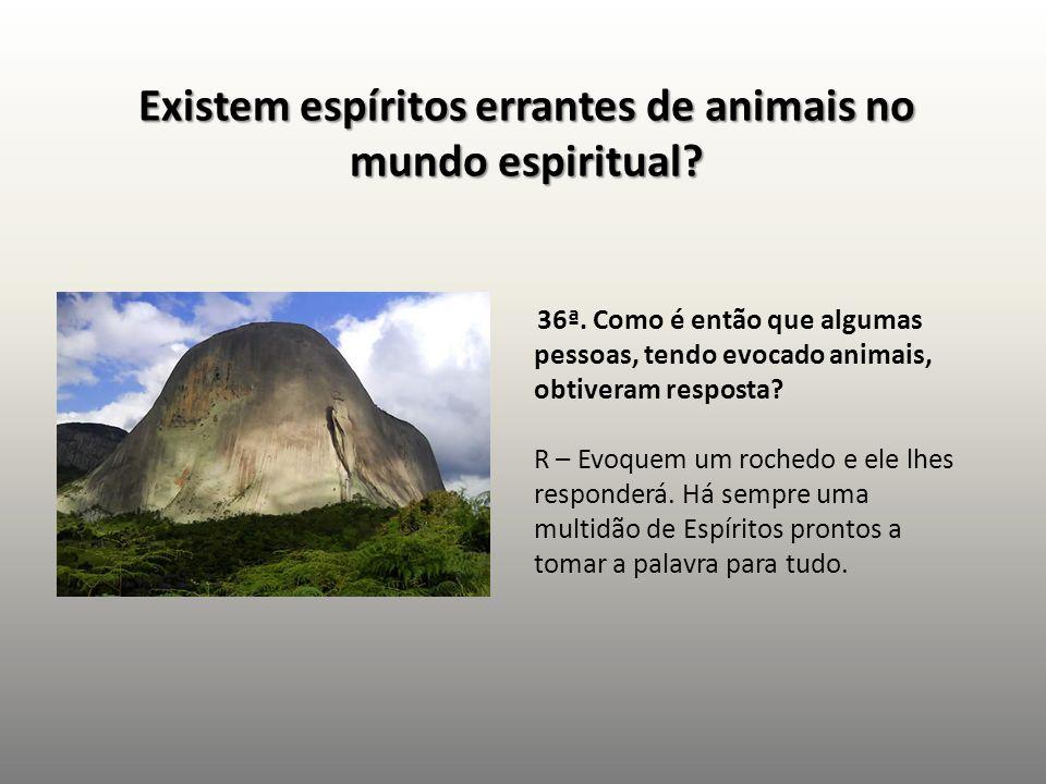 Existem espíritos errantes de animais no mundo espiritual? 36ª. Como é então que algumas pessoas, tendo evocado animais, obtiveram resposta? R – Evoqu