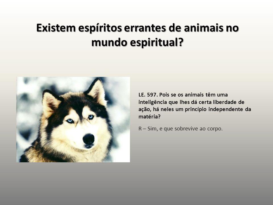 Existem espíritos errantes de animais no mundo espiritual? LE. 597. Pois se os animais têm uma inteligência que lhes dá certa liberdade de ação, há ne