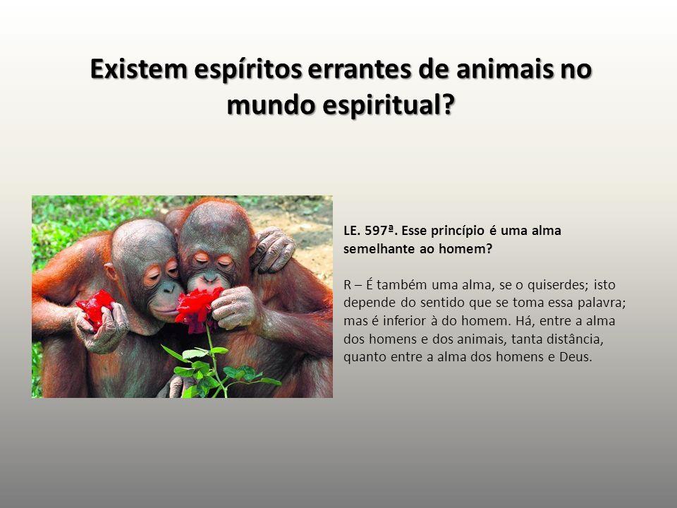 Existem espíritos errantes de animais no mundo espiritual? LE. 597ª. Esse princípio é uma alma semelhante ao homem? R – É também uma alma, se o quiser