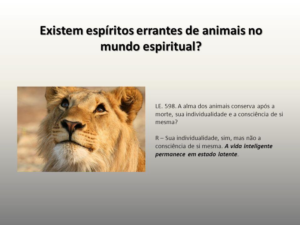 Existem espíritos errantes de animais no mundo espiritual? LE. 598. A alma dos animais conserva após a morte, sua individualidade e a consciência de s