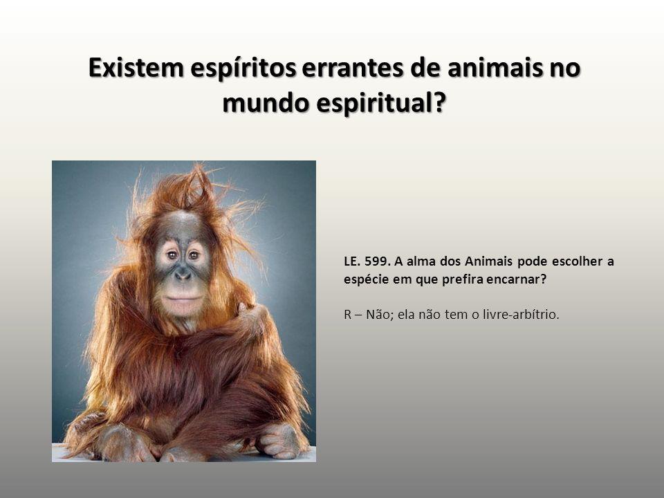 Existem espíritos errantes de animais no mundo espiritual? LE. 599. A alma dos Animais pode escolher a espécie em que prefira encarnar? R – Não; ela n