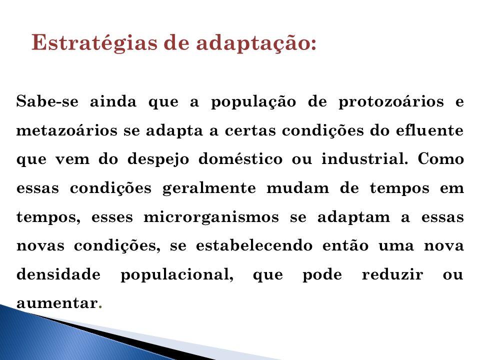 Sabe-se ainda que a população de protozoários e metazoários se adapta a certas condições do efluente que vem do despejo doméstico ou industrial.