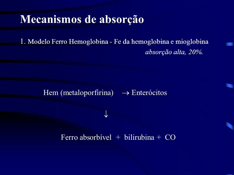 Mecanismos de absorção 2.Modelo Ferro livre, absorção baixa, 2 -20%.
