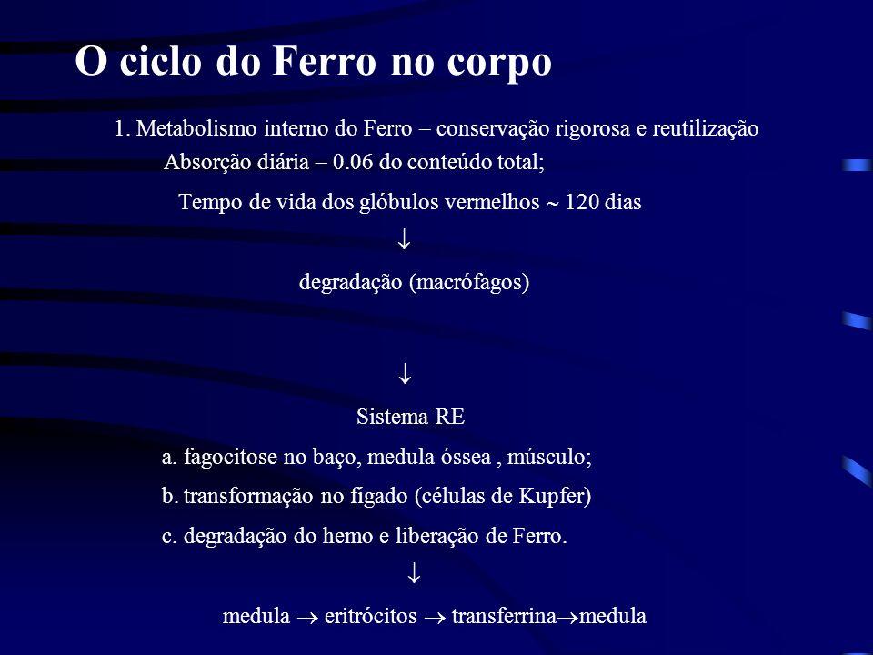 Obrigado Dr. Petr Melnikov