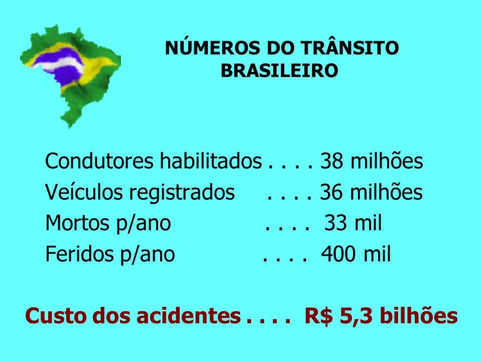NÚMEROS DO TRÂNSITO BRASILEIRO Condutores habilitados....