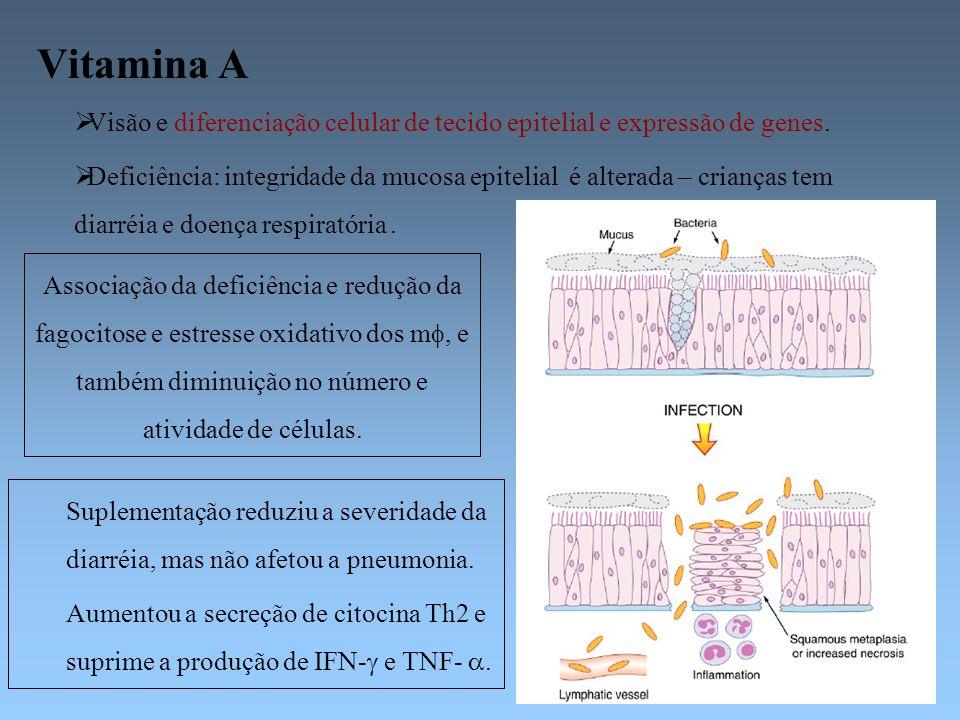 Vitamina A Visão e diferenciação celular de tecido epitelial e expressão de genes. Deficiência: integridade da mucosa epitelial é alterada – crianças