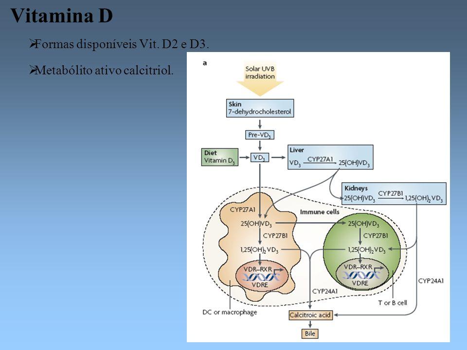 Vitamina D Formas disponíveis Vit. D2 e D3. Metabólito ativo calcitriol.