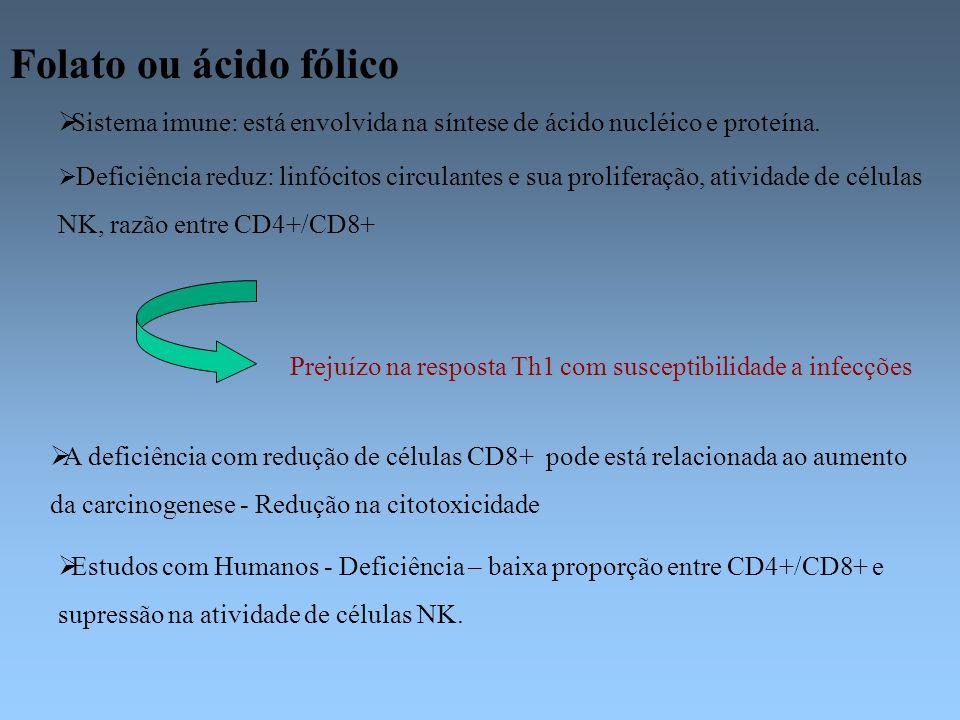 Folato ou ácido fólico Sistema imune: está envolvida na síntese de ácido nucléico e proteína. Deficiência reduz: linfócitos circulantes e sua prolifer