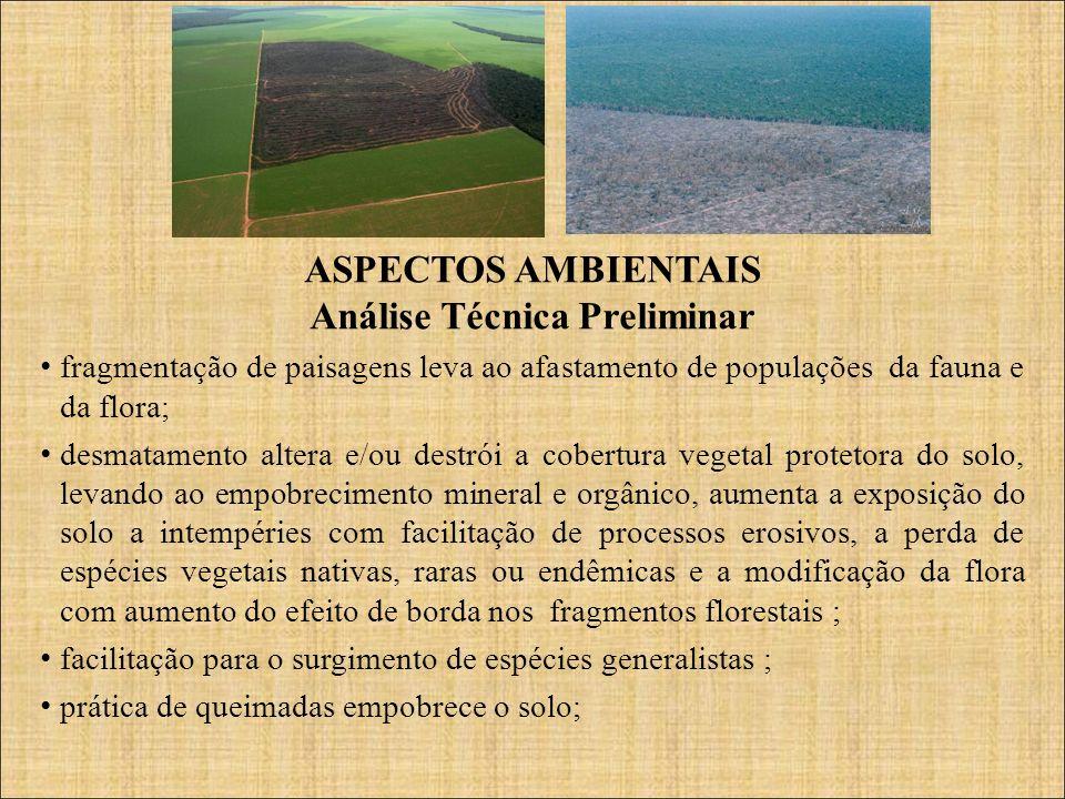 ASPECTOS AMBIENTAIS Análise Técnica Preliminar fragmentação de paisagens leva ao afastamento de populações da fauna e da flora; desmatamento altera e/