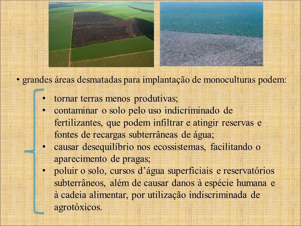 grandes áreas desmatadas para implantação de monoculturas podem: tornar terras menos produtivas; contaminar o solo pelo uso indicriminado de fertilizantes, que podem infiltrar e atingir reservas e fontes de recargas subterrâneas de água; causar desequilíbrio nos ecossistemas, facilitando o aparecimento de pragas; poluir o solo, cursos dágua superficiais e reservatórios subterrâneos, além de causar danos à espécie humana e à cadeia alimentar, por utilização indiscriminada de agrotóxicos.
