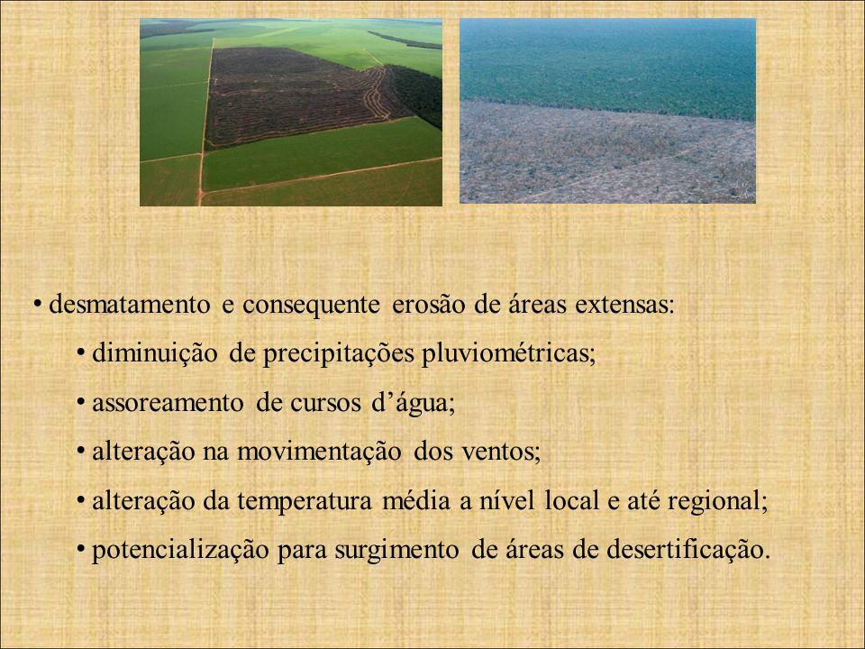 desmatamento e consequente erosão de áreas extensas: diminuição de precipitações pluviométricas; assoreamento de cursos dágua; alteração na movimentação dos ventos; alteração da temperatura média a nível local e até regional; potencialização para surgimento de áreas de desertificação.