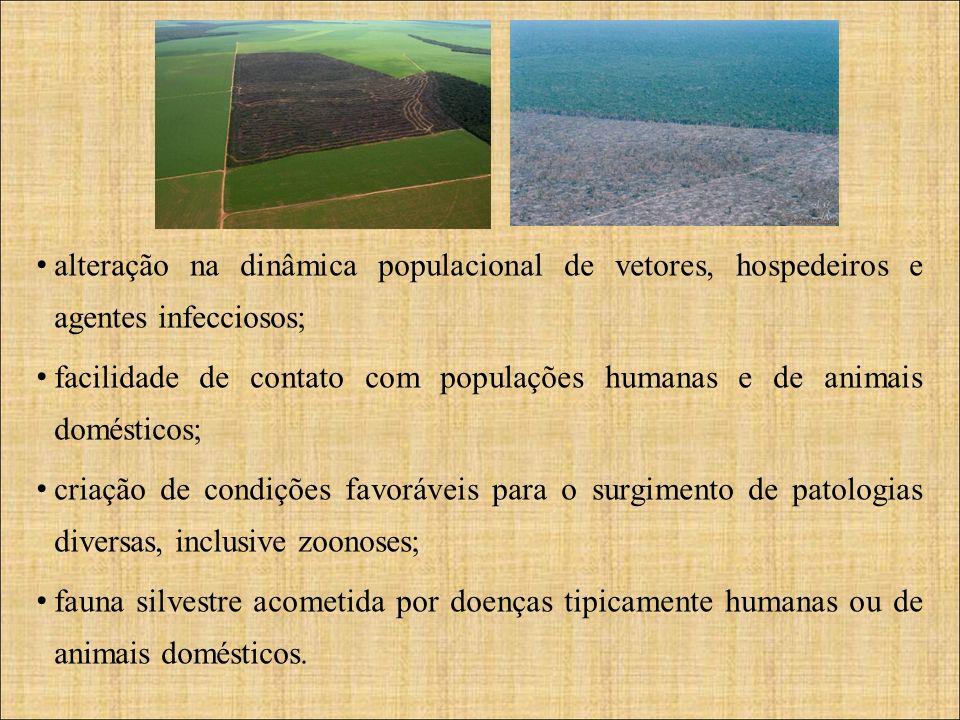 alteração na dinâmica populacional de vetores, hospedeiros e agentes infecciosos; facilidade de contato com populações humanas e de animais domésticos
