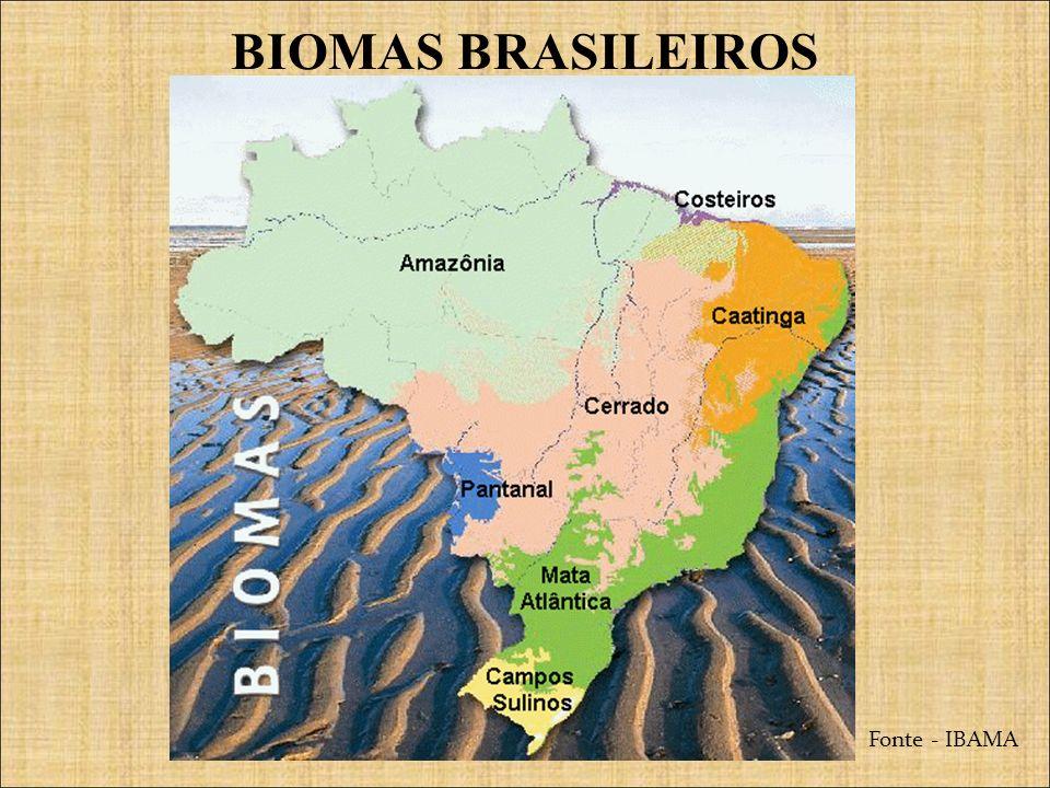 BIOMAS BRASILEIROS Fonte - IBAMA