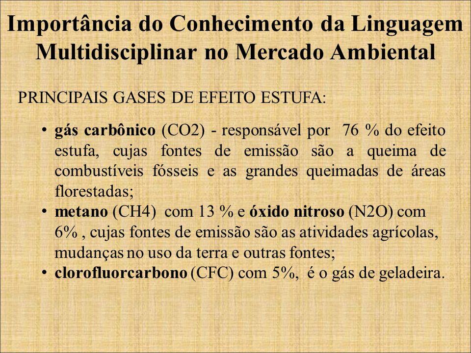 PRINCIPAIS GASES DE EFEITO ESTUFA: gás carbônico (CO2) - responsável por 76 % do efeito estufa, cujas fontes de emissão são a queima de combustíveis fósseis e as grandes queimadas de áreas florestadas; metano (CH4) com 13 % e óxido nitroso (N2O) com 6%, cujas fontes de emissão são as atividades agrícolas, mudanças no uso da terra e outras fontes; clorofluorcarbono (CFC) com 5%, é o gás de geladeira.