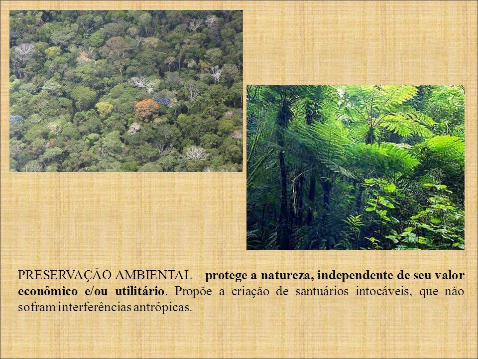 PRESERVAÇÃO AMBIENTAL – protege a natureza, independente de seu valor econômico e/ou utilitário. Propõe a criação de santuários intocáveis, que não so