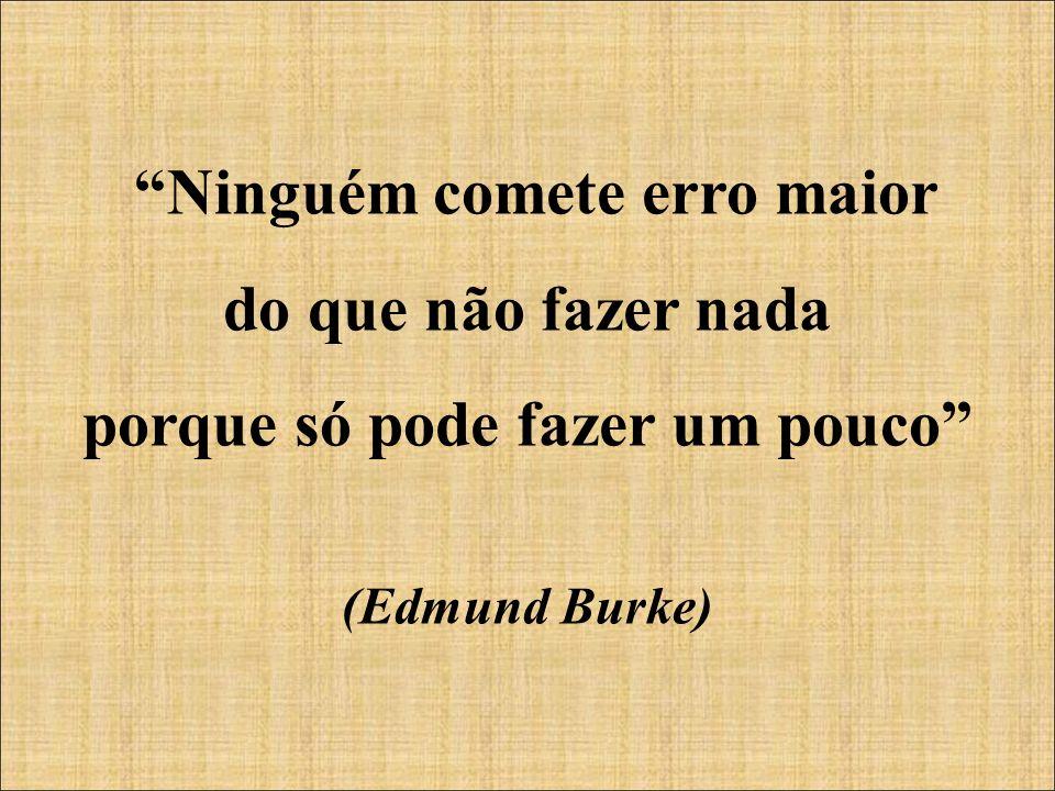 Ninguém comete erro maior do que não fazer nada porque só pode fazer um pouco (Edmund Burke)