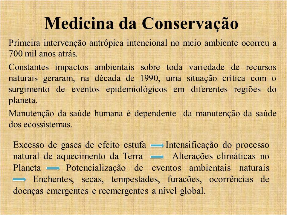 Primeira intervenção antrópica intencional no meio ambiente ocorreu a 700 mil anos atrás.