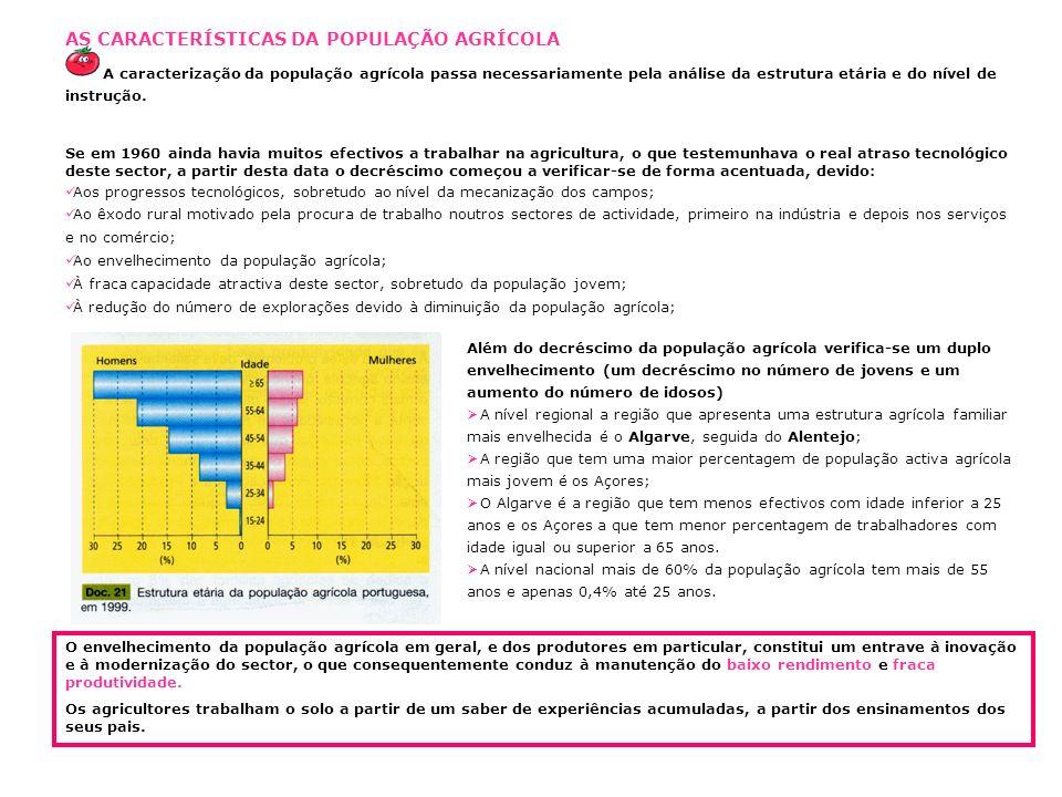 AS CARACTERÍSTICAS DA POPULAÇÃO AGRÍCOLA A caracterização da população agrícola passa necessariamente pela análise da estrutura etária e do nível de instrução.
